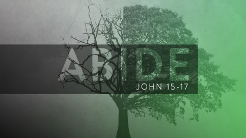 Abide – Adult Bible Study